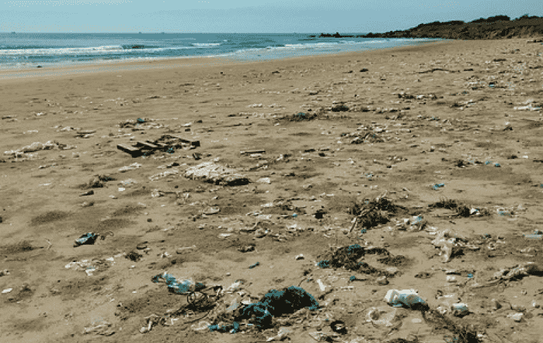 To-go plastic littering the oceans