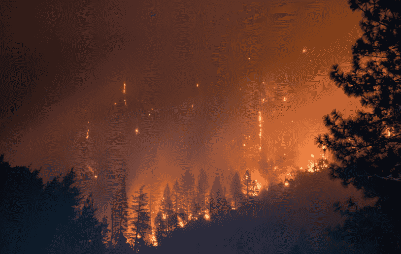 Forest Fires in Canada and the USA continue to spread